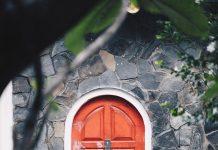 Does your cat door-dash?